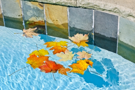 Winterizing Protect Your Pool